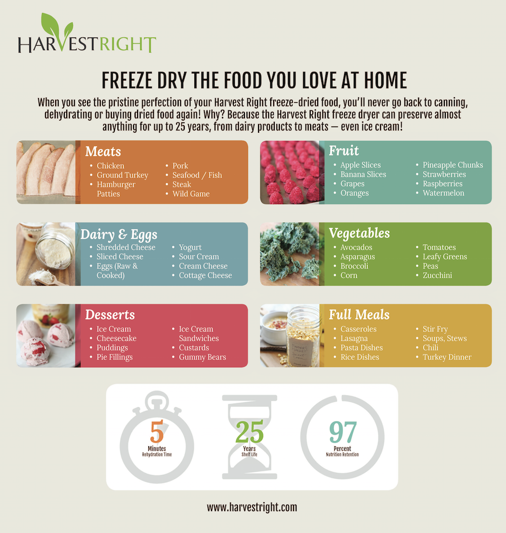 Freeze dried food infographic